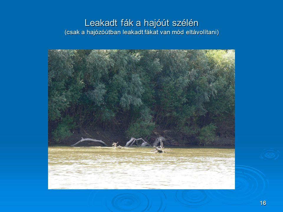 Leakadt fák a hajóút szélén (csak a hajózóútban leakadt fákat van mód eltávolítani) 16