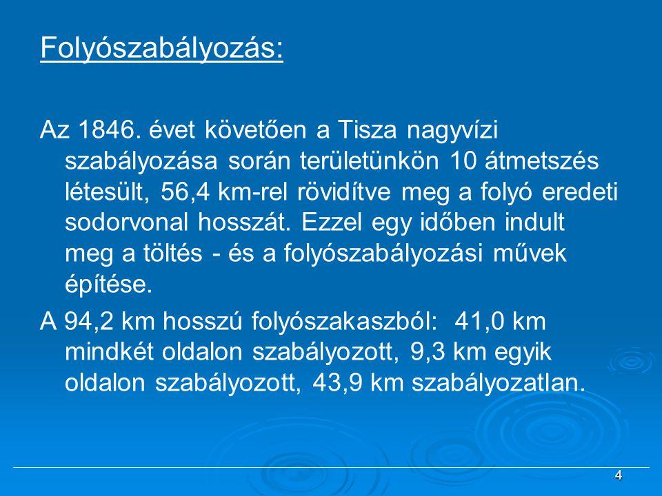 Folyószabályozás: Az 1846. évet követően a Tisza nagyvízi szabályozása során területünkön 10 átmetszés létesült, 56,4 km-rel rövidítve meg a folyó ere