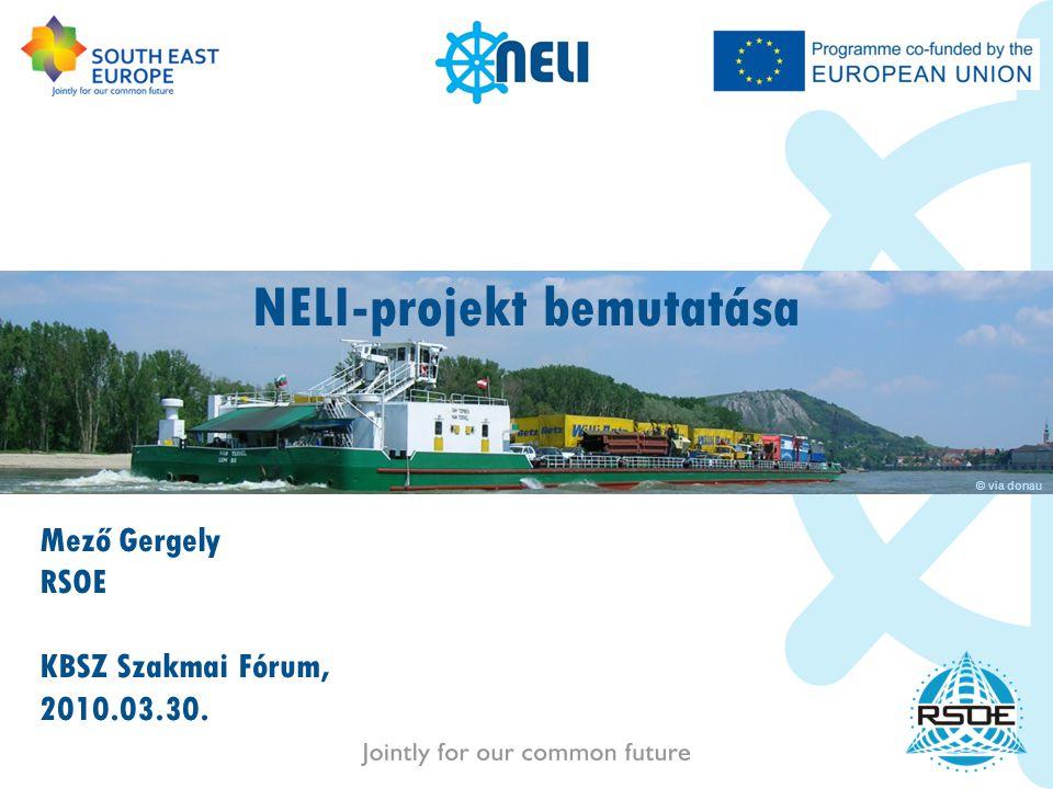 NELI-projekt bemutatása Mező Gergely RSOE KBSZ Szakmai Fórum, 2010.03.30. © via donau