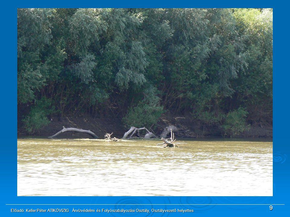 9 Gondot jelent a középvízi meder élben lévő fák folyóba dőlése, melyek veszélyeztethetik a hajózás biztonságát. Elegendő forrás hiányában csak a hajó