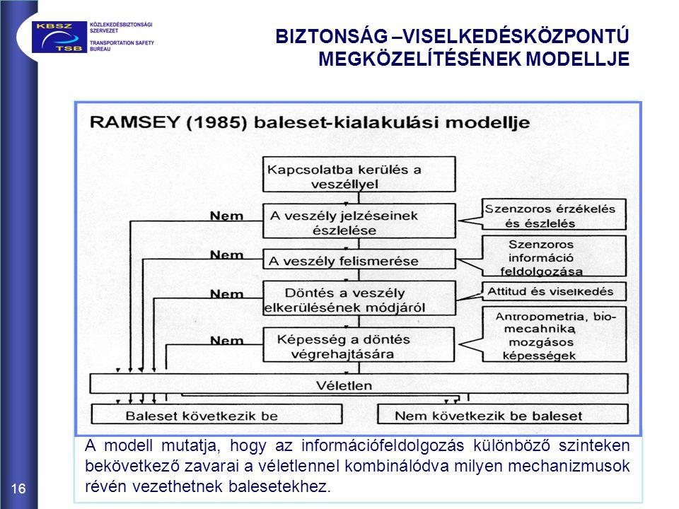 A modell mutatja, hogy az információfeldolgozás különböző szinteken bekövetkező zavarai a véletlennel kombinálódva milyen mechanizmusok révén vezethet