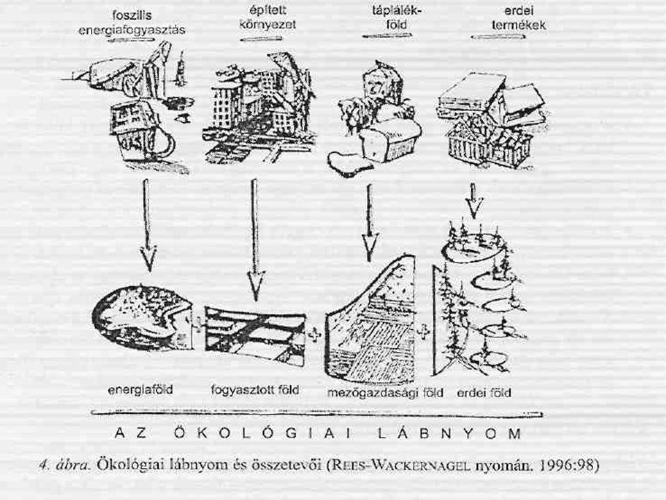Ökológiai lábnyom (kép)