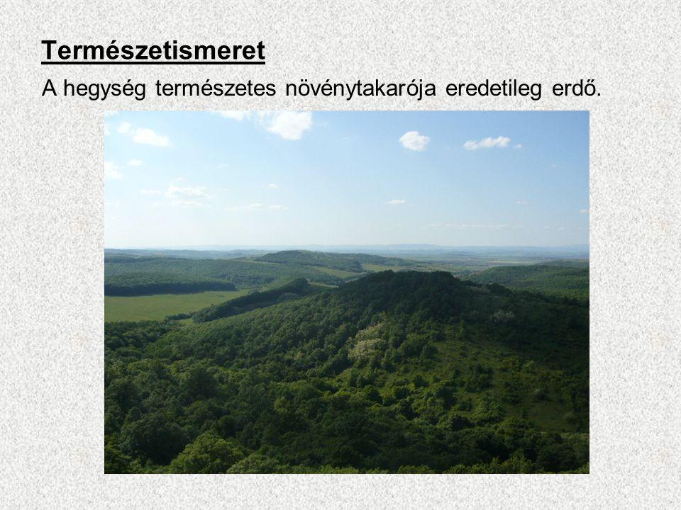 Természetismeret A hegység természetes növénytakarója eredetileg erdő.