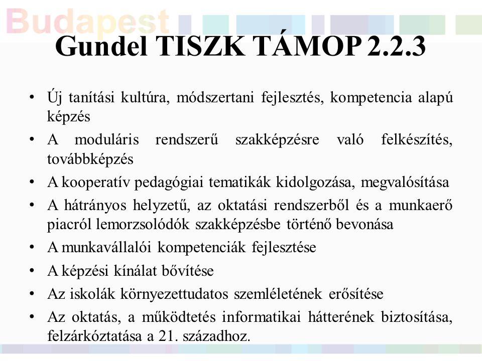 Gundel TISZK TÁMOP 2.2.3 Új tanítási kultúra, módszertani fejlesztés, kompetencia alapú képzés A moduláris rendszerű szakképzésre való felkészítés, továbbképzés A kooperatív pedagógiai tematikák kidolgozása, megvalósítása A hátrányos helyzetű, az oktatási rendszerből és a munkaerő piacról lemorzsolódók szakképzésbe történő bevonása A munkavállalói kompetenciák fejlesztése A képzési kínálat bővítése Az iskolák környezettudatos szemléletének erősítése Az oktatás, a működtetés informatikai hátterének biztosítása, felzárkóztatása a 21.