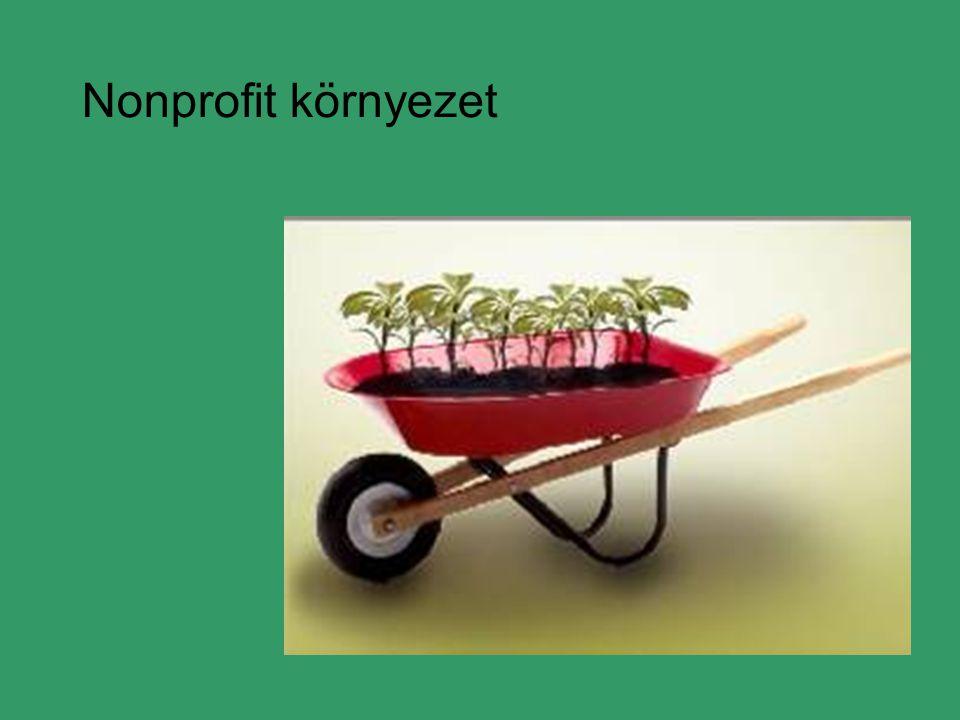 Nonprofit környezet
