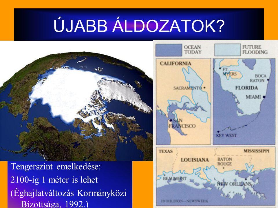 ÚJABB ÁLDOZATOK? Tengerszint emelkedése: 2100-ig 1 méter is lehet (Éghajlatváltozás Kormányközi Bizottsága, 1992.)