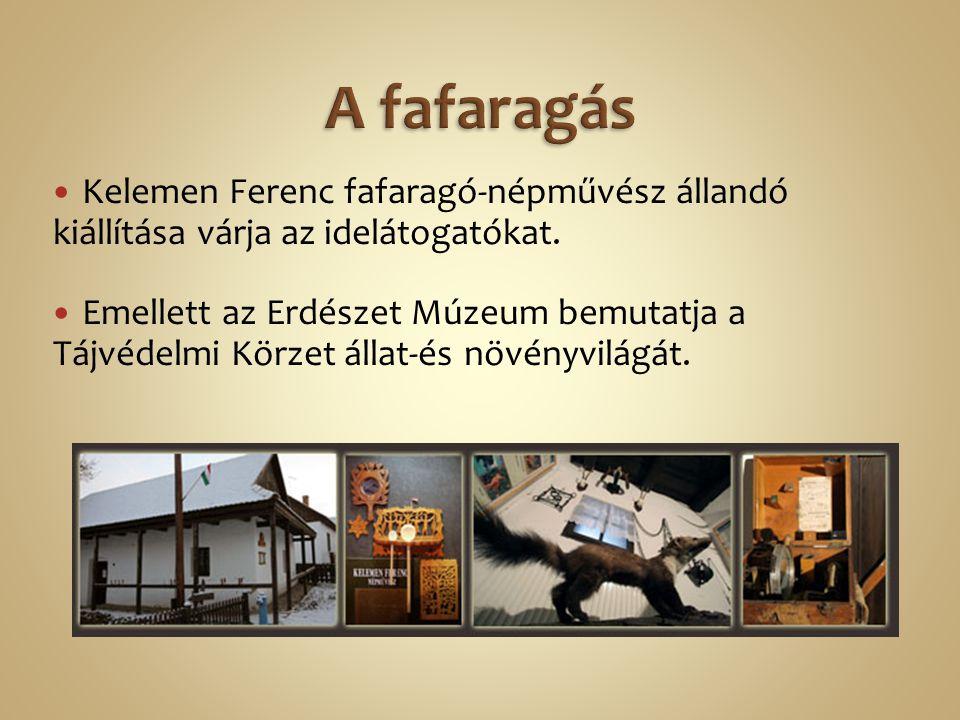 Kelemen Ferenc fafaragó-népművész állandó kiállítása várja az idelátogatókat. Emellett az Erdészet Múzeum bemutatja a Tájvédelmi Körzet állat-és növén
