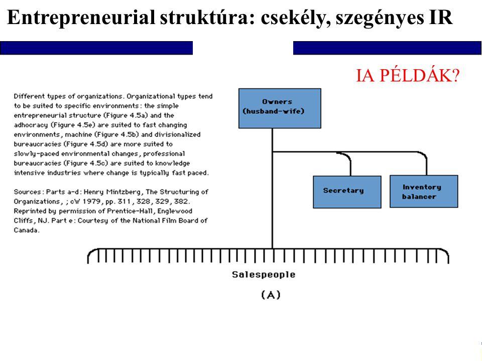 Info architektúrák I. Dobay Péter, PTE KTK 41/48 B/ B/ Amiben eltérnek szervezetek, inforendszerek 1/ Entrepreneurial : egyszerű, fiatal, kicsi 2/ Mac