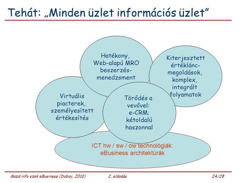 Gazd.info szak eBusiness (Dobay, 2010)2.