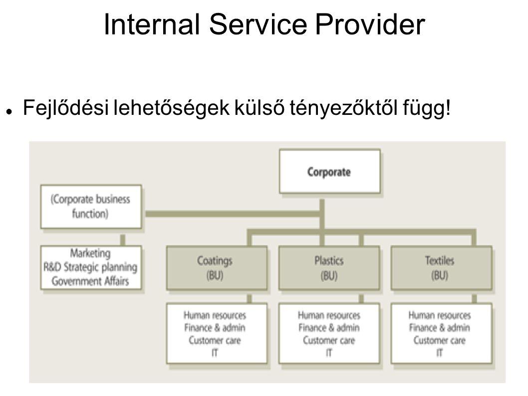 Internal Service Provider Fejlődési lehetőségek külső tényezőktől függ!