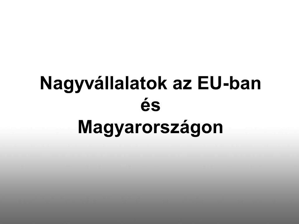 Nagyvállalatok az EU-ban és Magyarországon