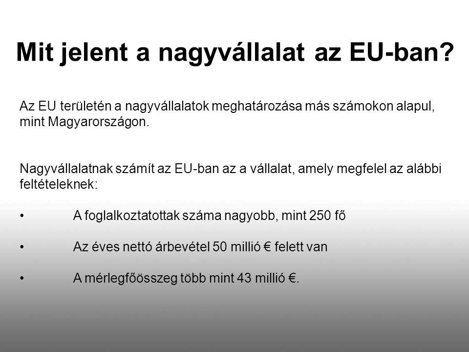 Az EU területén a nagyvállalatok meghatározása más számokon alapul, mint Magyarországon. Nagyvállalatnak számít az EU-ban az a vállalat, amely megfele