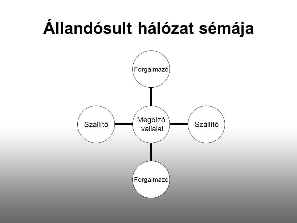 Állandósult hálózat sémája Megbízó vállalat ForgalmazóSzállítóForgalmazóSzállító