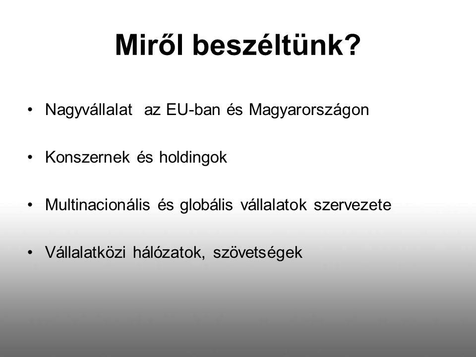 Miről beszéltünk? Nagyvállalat az EU-ban és Magyarországon Konszernek és holdingok Multinacionális és globális vállalatok szervezete Vállalatközi háló