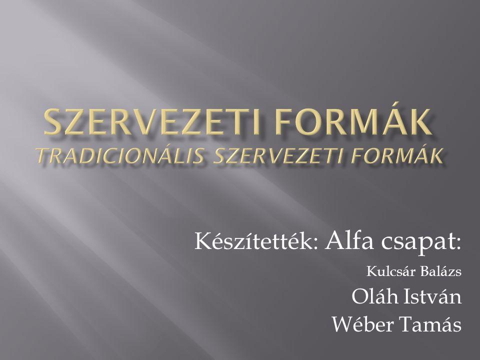 Készítették: Alfa csapat : Kulcsár Balázs Oláh István Wéber Tamás