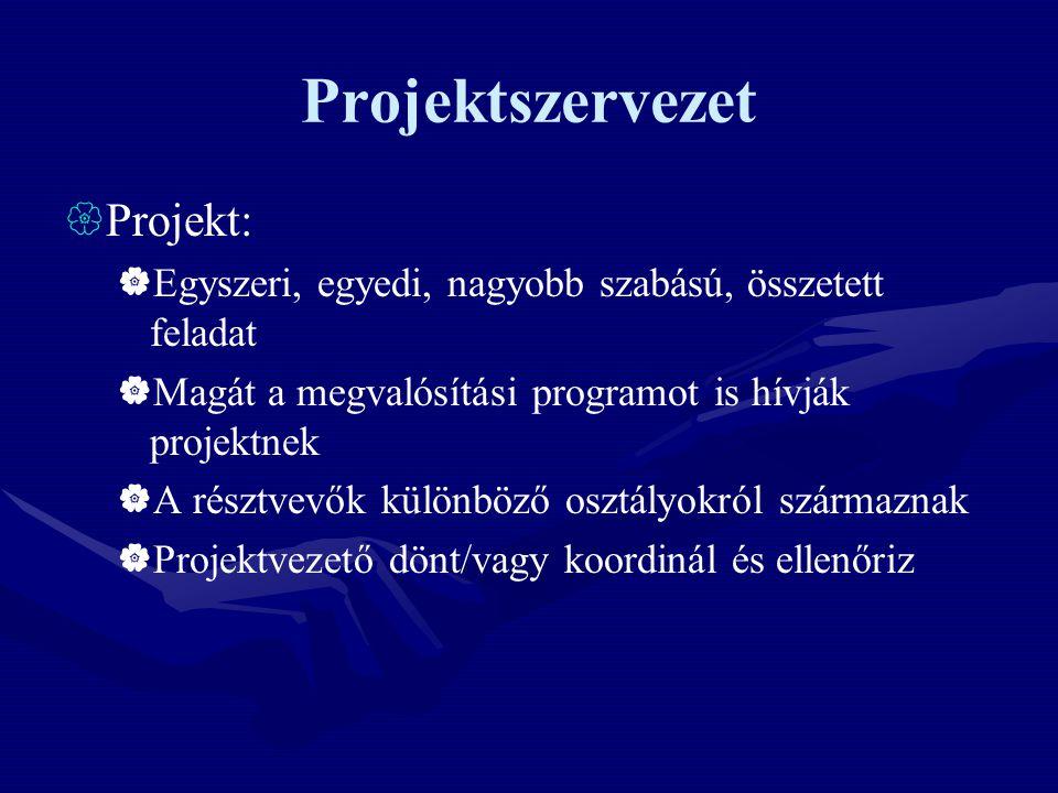 Projektszervezet  Projekt:  Egyszeri, egyedi, nagyobb szabású, összetett feladat  Magát a megvalósítási programot is hívják projektnek  A résztvev