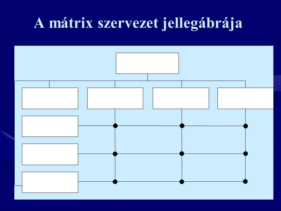 A mátrix szervezet jellegábrája Dolgozó