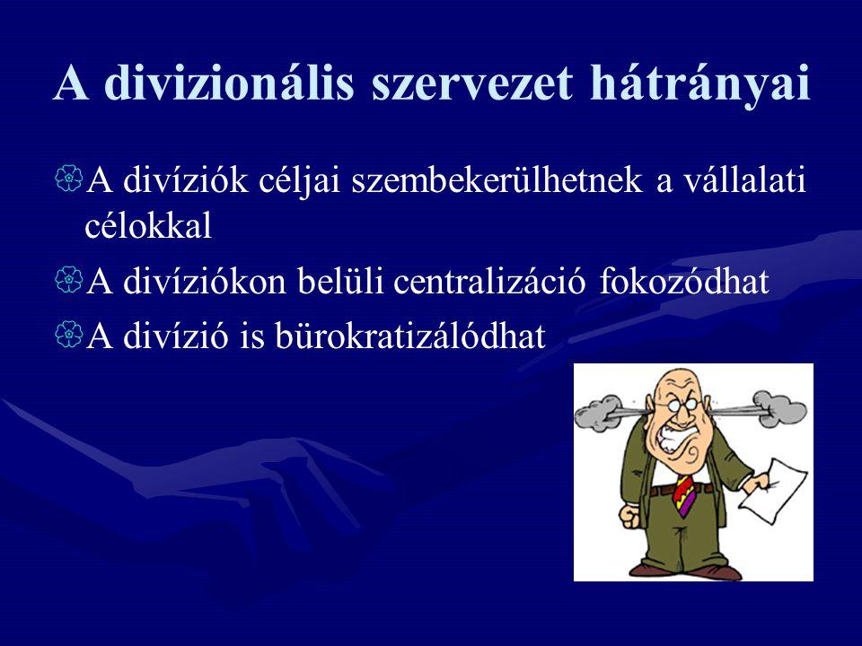 A divizionális szervezet hátrányai  A divíziók céljai szembekerülhetnek a vállalati célokkal  A divíziókon belüli centralizáció fokozódhat  A divíz