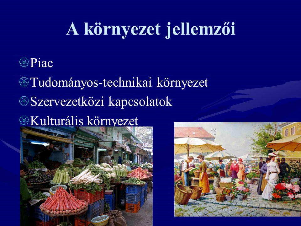 A környezet jellemzői  Piac  Tudományos-technikai környezet  Szervezetközi kapcsolatok  Kulturális környezet