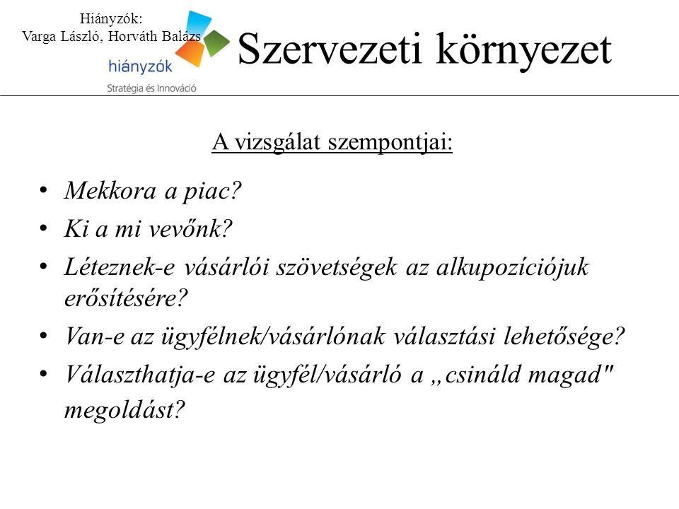 Hiányzók: Varga László, Horváth Balázs Szervezeti környezet A vizsgálat szempontjai: Mekkora a piac.
