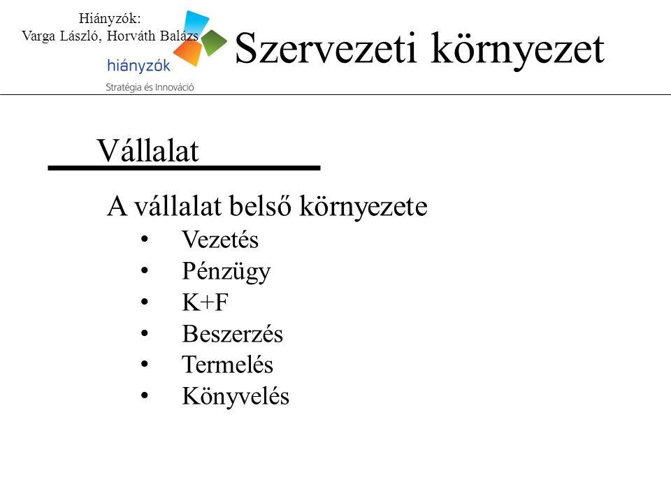 Hiányzók: Varga László, Horváth Balázs Vállalat A vállalat belső környezete Vezetés Pénzügy K+F Beszerzés Termelés Könyvelés Szervezeti környezet
