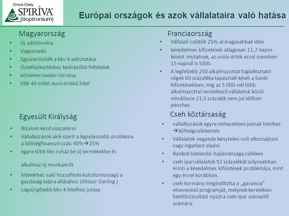 Európai országok és azok vállalataira való hatása vállalkozások egyre nehezebben jutnak hitelhez  költségcsökkentés Vállalatok negyede kénytelen volt elbocsájtani vagy ingatlant eladni Bankok hitelezési hajlandósága csökken cseh iparvállalatok 92 százalékát súlyosabban érinti a késedelmes kifizetések problémája, mint egy évvel korábban.