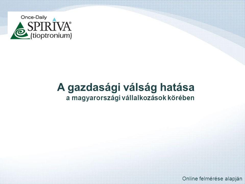 A gazdasági válság hatása a magyarországi vállalkozások körében Online felmérése alapján