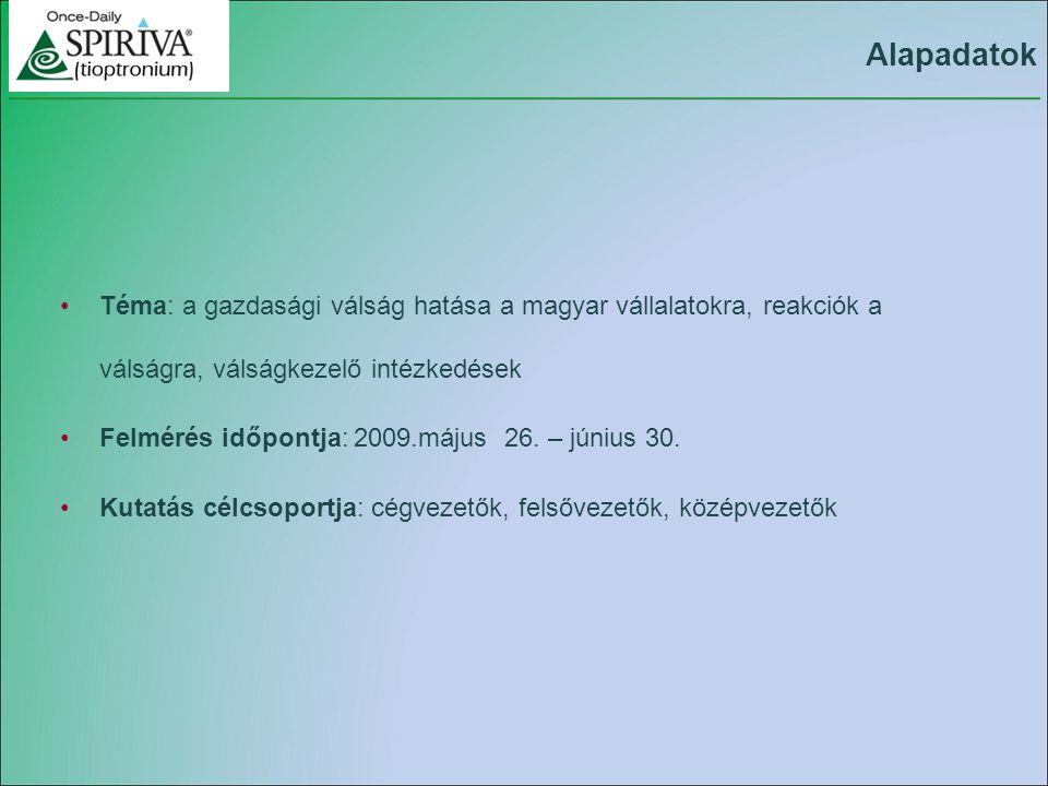 Téma: a gazdasági válság hatása a magyar vállalatokra, reakciók a válságra, válságkezelő intézkedések Felmérés időpontja: 2009.május 26.
