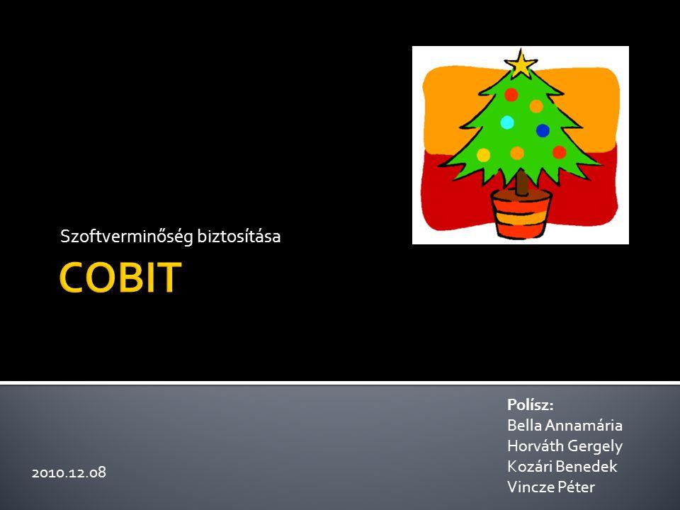  COBIT bemutatása  COBIT keretrendszer  COBIT kocka 2/11
