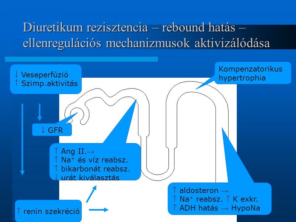 Diuretikum rezisztencia – rebound hatás – ellenregulációs mechanizmusok aktivizálódása  GFR  Ang II.  Na + és víz reabsz.  bikarbonát reabsz.  u