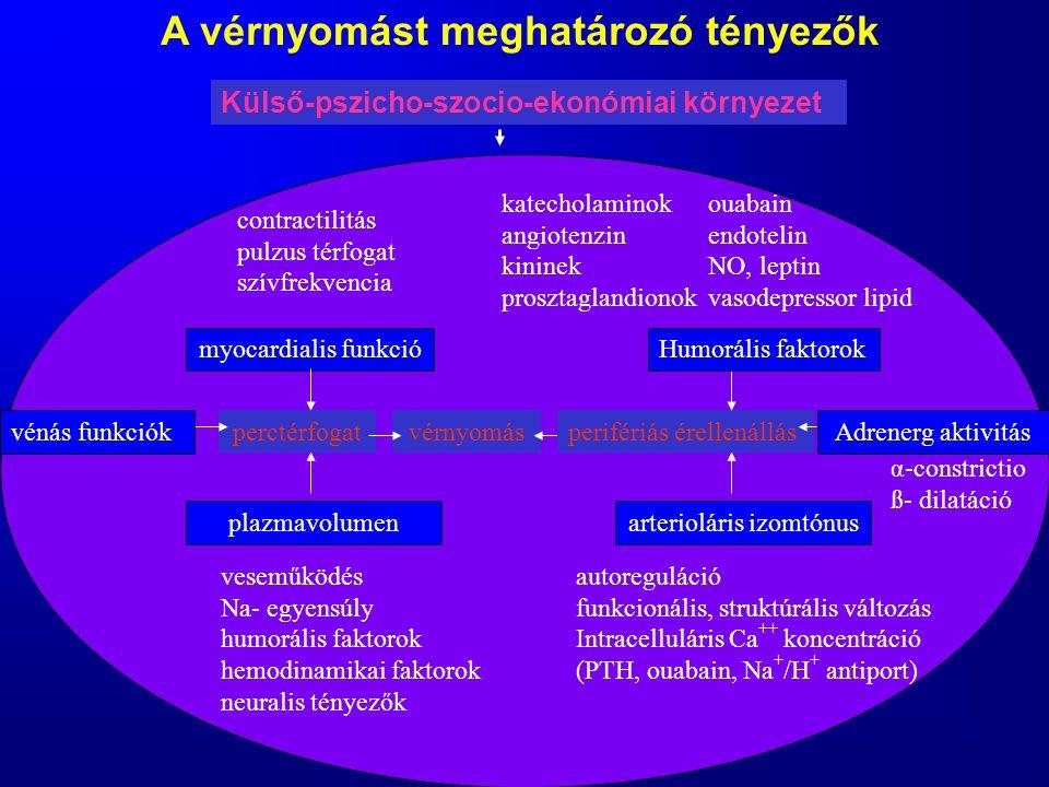 A vérnyomást meghatározó tényezők Külső-pszicho-szocio-ekonómiai környezet contractilitás pulzus térfogat szívfrekvencia myocardialis funkció perctérf