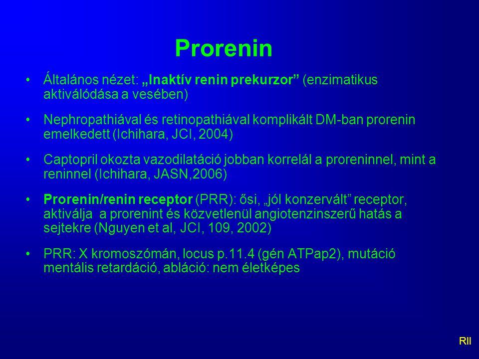 """Prorenin Általános nézet: """"Inaktív renin prekurzor"""" (enzimatikus aktiválódása a vesében) Nephropathiával és retinopathiával komplikált DM-ban prorenin"""