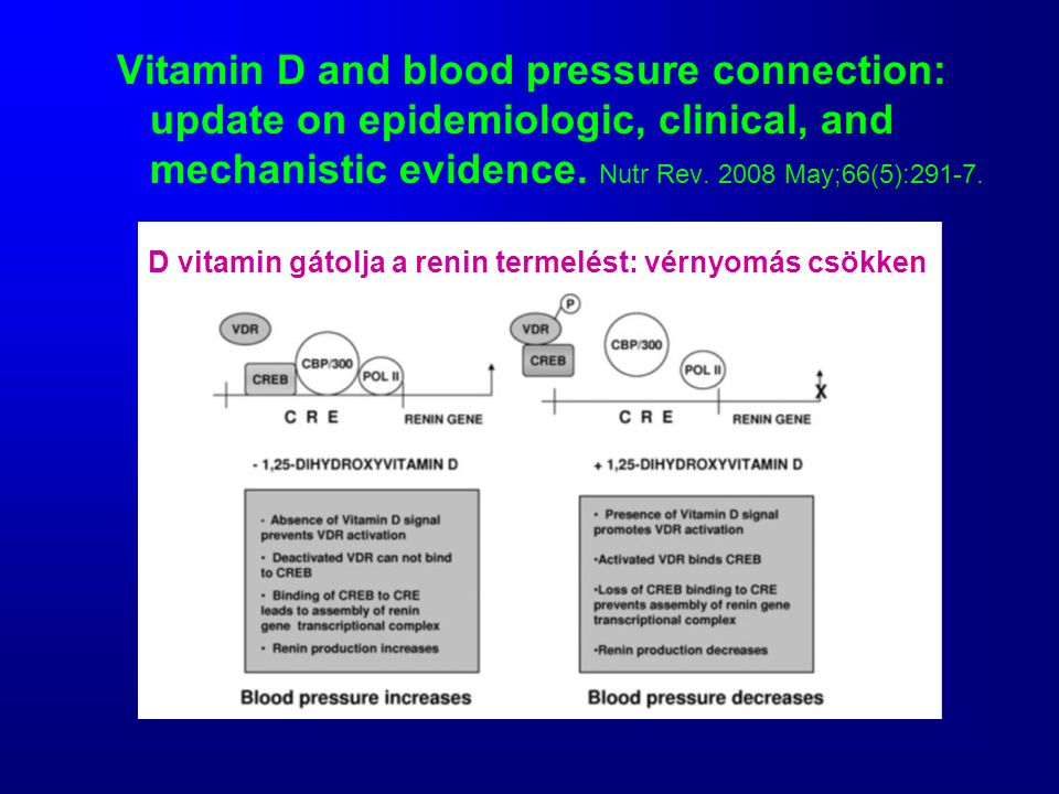 Vitamin D and blood pressure connection: update on epidemiologic, clinical, and mechanistic evidence.