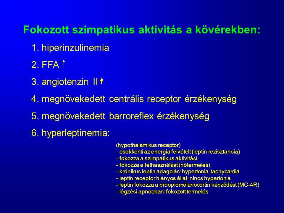Fokozott szimpatikus aktivitás a kövérekben: 1. hiperinzulinemia 2. FFA 3. angiotenzin II 4. megnövekedett centrális receptor érzékenység 5. megnöveke
