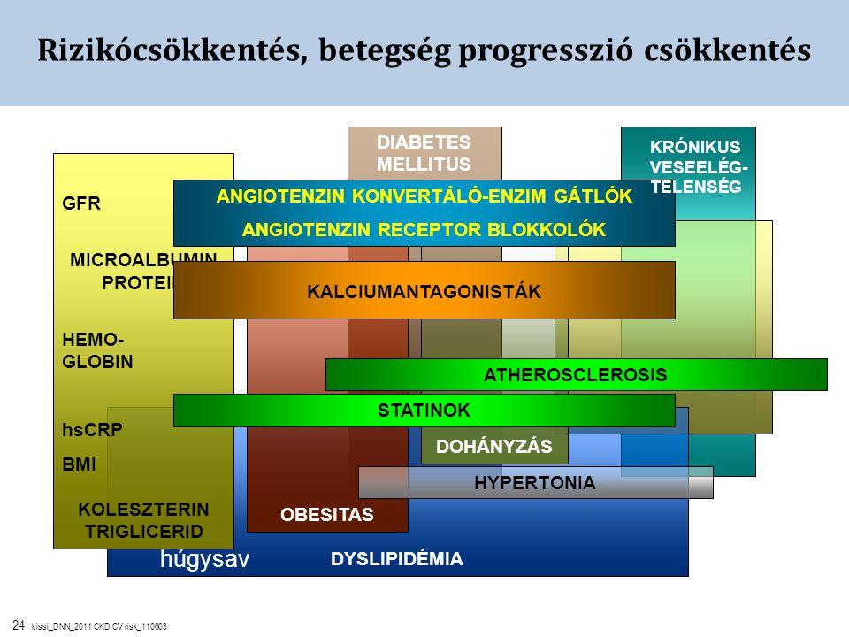 24 kissi_DNN_2011 CKD CV risk_110603 ATHEROSCLEROSIS DIABETES MELLITUS DYSLIPIDÉMIA DOHÁNYZÁS OBESITAS Rizikócsökkentés, betegség progresszió csökkent