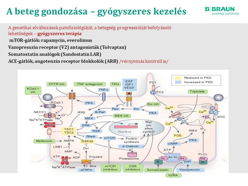 A beteg gondozása – gyógyszeres kezelés A genetikai elváltozások patofiziológiáját, a betegség progresszióját befolyásoló lehetőségek – gyógyszeres terápia mTOR-gátlók: rapamycin, everolimus Vazopresszin receptor (V2) antagonisták (Tolvaptan) Somatostatin analógok (Sandostatin LAR) ACE-gátlók, angotenzin receptor blokkolók (ARB) /vérnyomás kontroll is/
