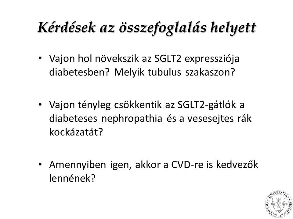 Kérdések az összefoglalás helyett Vajon hol növekszik az SGLT2 expressziója diabetesben.