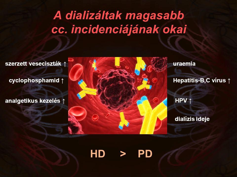 szerzett veseciszták ↑ HPV ↑ analgetikus kezelés ↑ cyclophosphamid ↑ A dializáltak magasabb cc. incidenciájának okai HD > PD dialízis ideje Hepatitis-