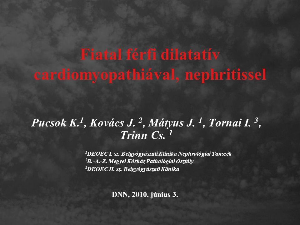 Fiatal férfi dilatatív cardiomyopathiával, nephritissel Pucsok K. 1, Kovács J. 2, Mátyus J. 1, Tornai I. 3, Trinn Cs. 1 1 DEOEC I. sz. Belgyógyászati