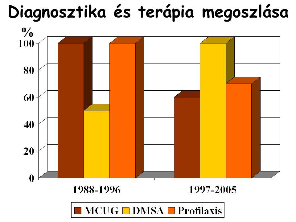 Diagnosztika és terápia megoszlása %