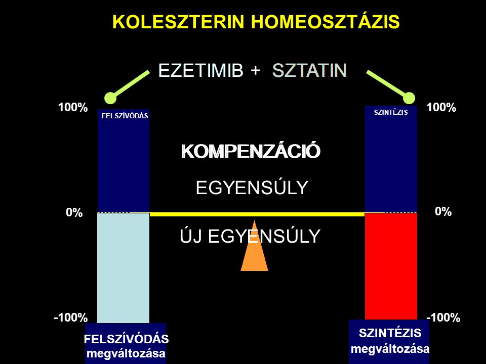 0% 100% -100% 100% -100% KOLESZTERIN HOMEOSZTÁZIS SZTATIN EGYENSÚLY SZINTÉZIS megváltozása FELSZÍVÓDÁS megváltozása KOMPENZÁCIÓ ÚJ EGYENSÚLY EZETIMIBSZTATINEZETIMIB + FELSZÍVÓDÁS SZINTÉZIS