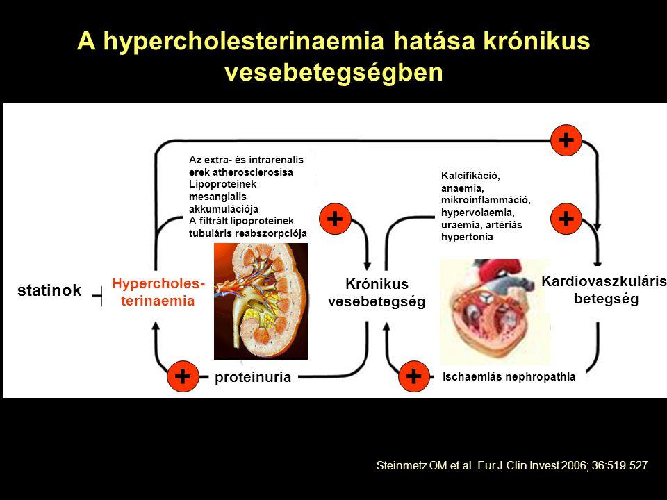 A hypercholesterinaemia hatása krónikus vesebetegségben Steinmetz OM et al. Eur J Clin Invest 2006; 36:519-527 ++ ++ + proteinuria Ischaemiás nephropa