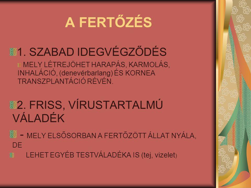 A FERTŐZÉS 1. SZABAD IDEGVÉGZŐDÉS MELY LÉTREJÖHET HARAPÁS, KARMOLÁS, INHALÁCIÓ, (denevérbarlang) ÉS KORNEA TRANSZPLANTÁCIÓ RÉVÉN. 2. FRISS, VÍRUSTARTA