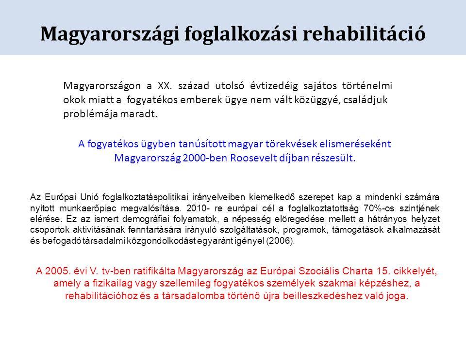 Magyarországon a XX. század utolsó évtizedéig sajátos történelmi okok miatt a fogyatékos emberek ügye nem vált közüggyé, családjuk problémája maradt.