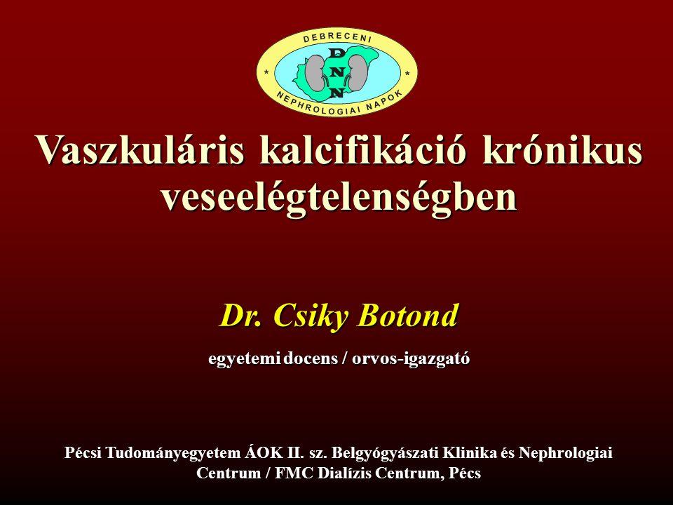 Vaszkuláris kalcifikáció krónikus veseelégtelenségben Dr. Csiky Botond egyetemi docens / orvos-igazgató Pécsi Tudományegyetem ÁOK II. sz. Belgyógyásza