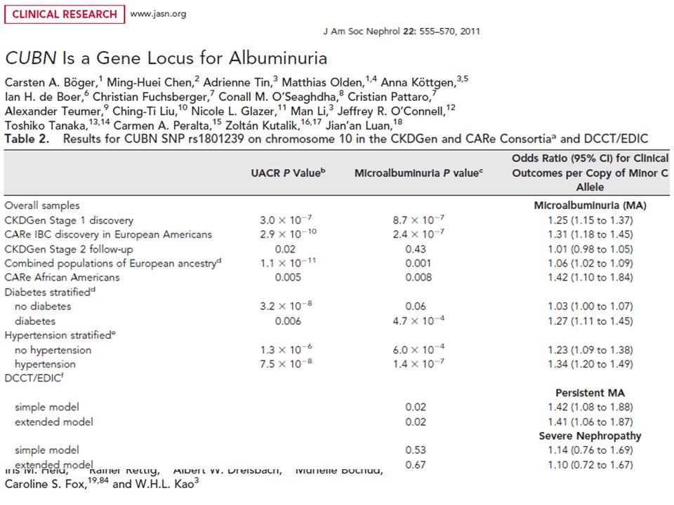 Az intenziv vérnyomáscsökkentés csak a proteinuriásokban mérsékli a CKD progresszióját AASK trial NEJM 2010 -14/8.5Hgmm >250mg/n