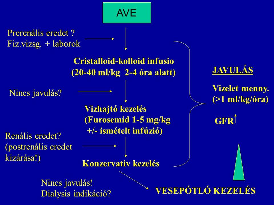 Prerenális eredet ? Fiz.vizsg. + laborok Cristalloid-kolloid infusio AVE (20-40 ml/kg 2-4 óra alatt) Vizhajtó kezelés (Furosemid 1-5 mg/kg +/- ismétel