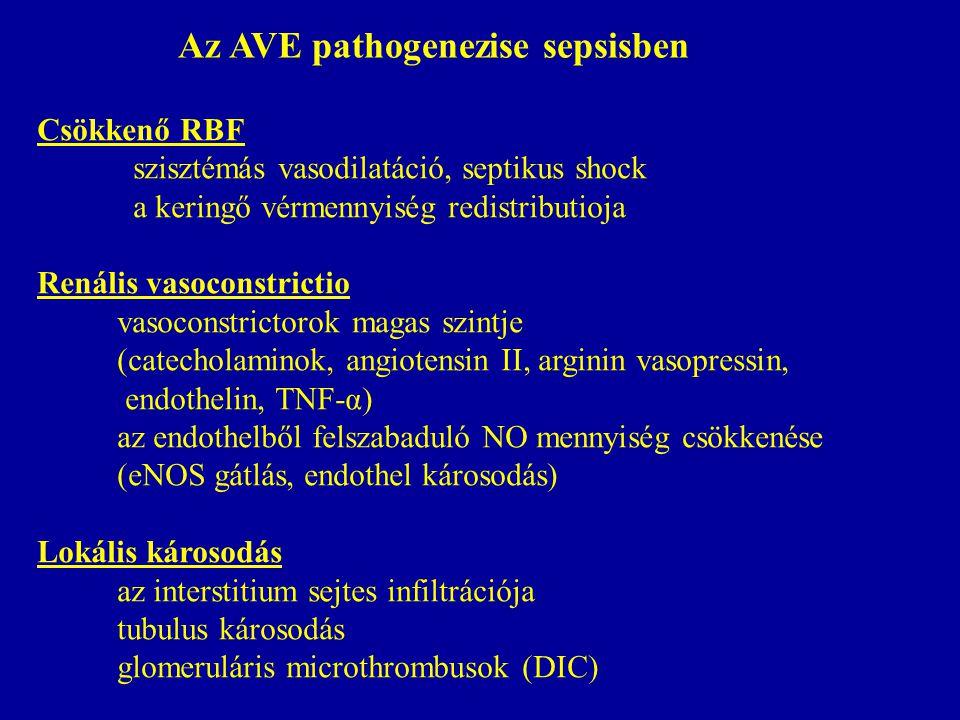 Csökkenő RBF szisztémás vasodilatáció, septikus shock a keringő vérmennyiség redistributioja Renális vasoconstrictio vasoconstrictorok magas szintje (