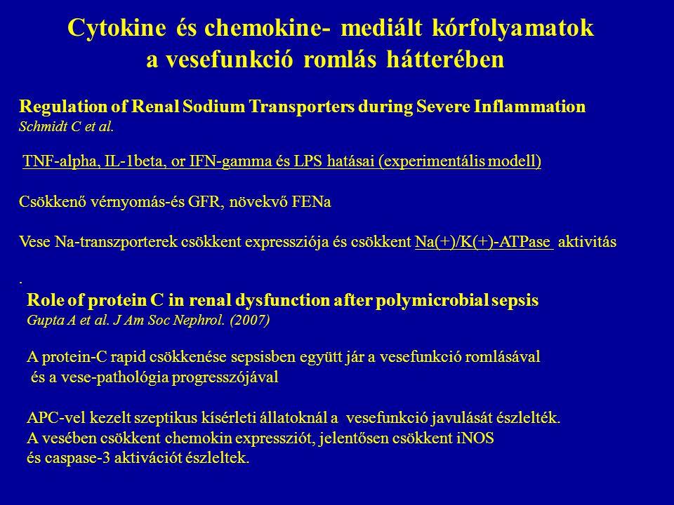 Cytokine és chemokine- mediált kórfolyamatok a vesefunkció romlás hátterében Regulation of Renal Sodium Transporters during Severe Inflammation Schmidt C et al.