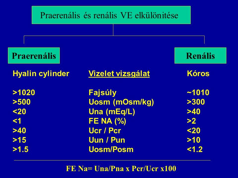 Praerenális és renális VE elkülönitése PraerenálisRenális Vizelet vizsgálat Fajsúly Uosm (mOsm/kg) Una (mEq/L) FE NA (%) Ucr / Pcr Uun / Pun Uosm/Posm